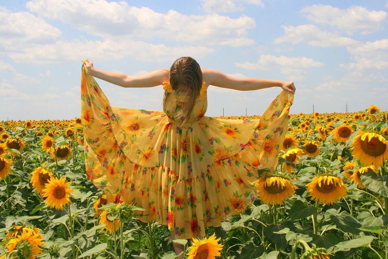 sunflower-834987_1280